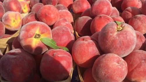 Температура хранения персиков. Особенности и основные правила хранения персиков