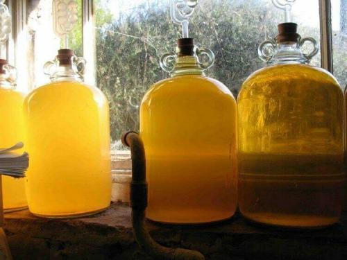 Сидр из груш и яблок в домашних условиях. Как сделать натуральный сидр в домашних условиях