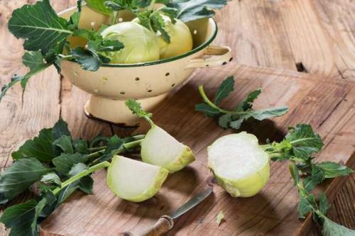 Кольраби капуста польза и противопоказания. Полезные свойства и противопоказания