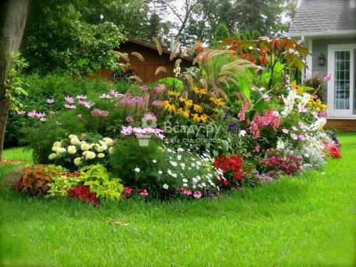 Дизайн газонов и клумб. Газоны и цветники на даче: фото необычных идей